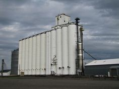 Feed Mill Management